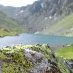 Le lac des Bataillères